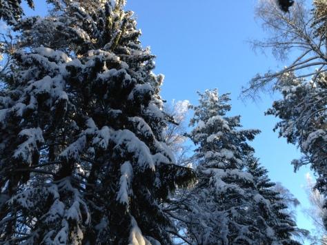 Vinterhimmel på Högberget, #asaole