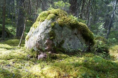 mossbelupen sten