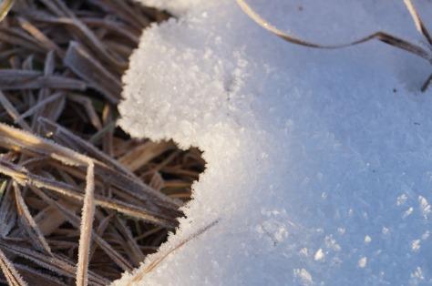 #snö, #asaole
